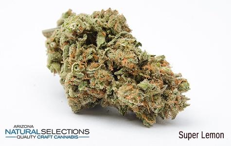 Super Lemon Haze Medical Marijuana for Sale in Phoenix