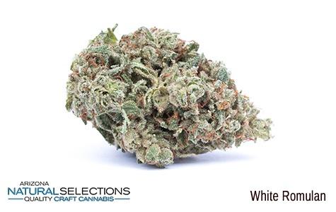 White Romulan Medical Marijuana for Sale in Phoenix