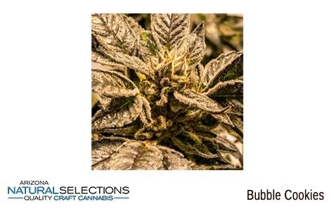 Arizona Natural Selections - Bubble Cookies MMJ for Sale Phoenix