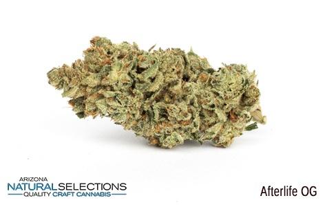 Arizona Natural Selections: Capsules - Arizona Natural Selections: Capsules - Afterlife OG